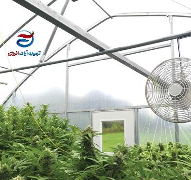 تهویه هوای گلخانه