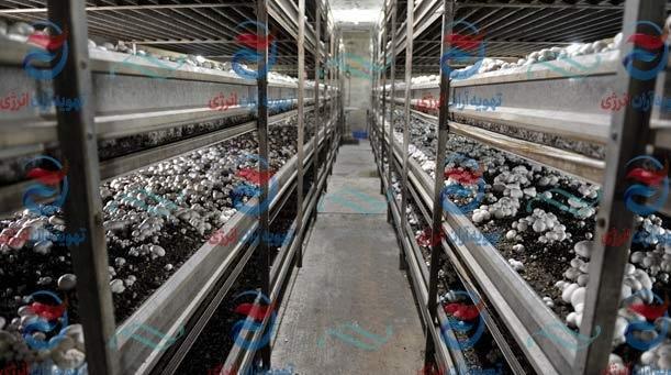 سیستم سرمایشی و گرمایشی سالن قارچ